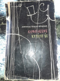 Kamarazene Rejtett Ut - Hortensia Papadat Bengescu, 1964