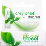 Creioneel (Creion Nazal)