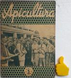 Revista Apicultura 5/1958