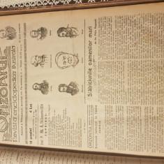 Revista Orizontul , colecția întreagă din anul 1924