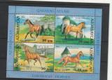 Fauna ,cai de rasa,Azerbaijan., Nestampilat