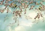 Fototapet 8-213 Sakura - Cires Japonez
