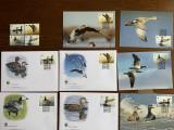 Islanda - pasari - serie 4 timbre MNH, 4 FDC, 4 maxime, fauna wwf