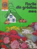 Florile din gradina mea (74) - Elena Selaru