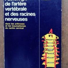 Pathologie de l`artere vertebrale et des racines nerveuses- A. Jung, P. Kehr