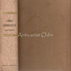 Lumea Animalelor Dupa Brehm - Rietschel, Hanke, Lotz - Coord.: Prof. M. Ionescu