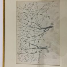 "Pictura Tablou Viorel Marginean ""Copaci cu pasari"""