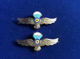 Insigne militare - Insigne România - Semne de armă - Parașutiști (culoare aurie)