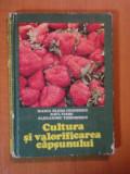 CULTURA SI VALORIFICAREA CAPSUNULUI de MARIA ELENA CEAUSESCU, RAUL VIERU, ALEXANDRU TEODORESCU 1982, COTORUL ESTE LIPIT CU SCOCI