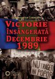 Victorie insangerata. Decembrie 1989 | Constantin Corneanu, Cetatea de Scaun