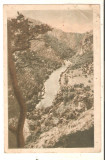 Carte Postala -Valea Oltului R.P.R.