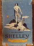 Shelley - Dan Grigorescu ,304255