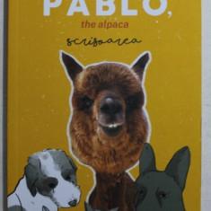 PABLO , THE ALPACA SCRISOAREA de MARIAN GODINA , 2019