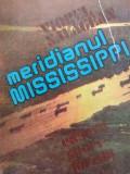 MERIDIANUL MISSISSIPI - VIOREL SALAGEAN