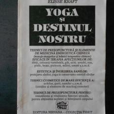 ELISSE KRAFT - YOGA SI DESTINUL NOSTRU
