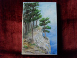 La malul marii 1-pictura ulei pe panza, Natura, Altul