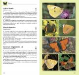 Determinator de plante și animale   Wilhelm Eisenreich, Alfred Handel, Ute E. Zimmer, Editura Casa