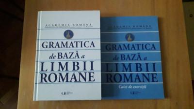 Gramatica de baza a limbii romane foto