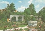 Romania, Timisoara, carte postala ilustrata 2, necirculata, Printata