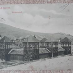 Sibiu - Baia Basna.