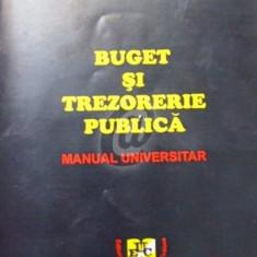Buget si trezorerie publica - Manual universitar