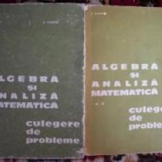Algebra si analiza matematica-N.Donciu,F.Flondor