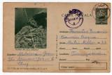 Carte postala  PASTRAVI DIN LACUL ZANOAGA   CDA 303 /IV.1964 TIRAJ 90000  EX