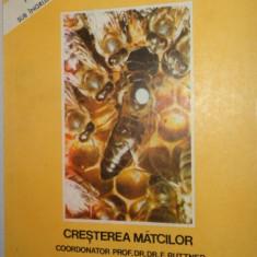 CRESTEREA MATCILOR - BAZE BIOLOGICE SI INDICATII TEHNICE / APICULTURA = RUTTNER