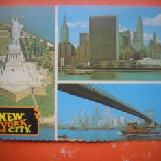 HOPCT 65254 NEW YORK CITY    SUA-CIRCULATA