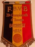 Fanion(vechi!)-Federatia de Volei din BELGIA(Campionatul European Masculin 1955)