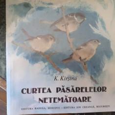 Curtea pasarelelor netematoare – K. Kirsina