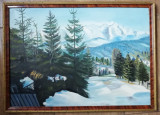 Tablou Peisaj Montan anii 60 pictura ulei inramat 52x72cm, Peisaje, Realism