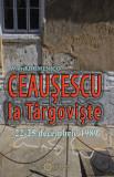 Ceausescu la Targoviste. 22-25 decembrie 1989/Viorel Domenico, Cetatea de Scaun