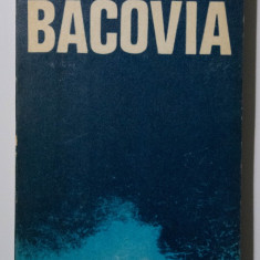 Daniel Dimitriu - Bacovia