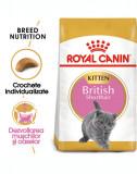 ROYAL CANIN Kitten British Shorthair 20 kg (2 x 10 kg) hrană uscată pentru pisoi British Shorthair de până la 12 luni