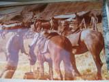 Film/teatru Romania- fotografie originala (25x19)-Profetul aurul si ardelenii 4