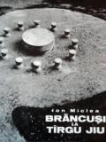 BRANCUSI LA TARGU JIU de ION MICLEA