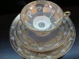 SET / SERVICIU MIC DEJUN DIN PORTELAN WINTERLING ROSLAU BAVARIA
