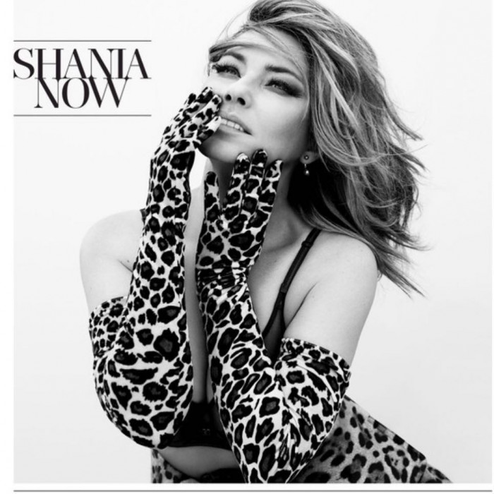 Shania Twain Now (cd)