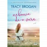 Nebunie de-o vara   Tracy Brogan
