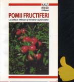 Pomii fructiferi Lucrari de infiintare si de intretinere a plantatiilor Chira
