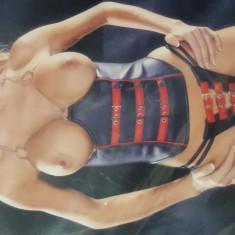 Corset din piele Insinuate - Model Sexy