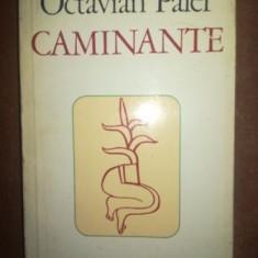 Caminante- Octavian Paler