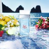 Dolce&Gabbana Light Blue Love Is Love Pour Femme EDT 100ml pentru Femei, Apa de toaleta, 100 ml, Dolce & Gabbana
