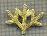 Y 1749 INSIGNA - MILITARA -SEMN DE ARMA -VANATORI DE MUNTE  -PENTRU COLECTIONARI