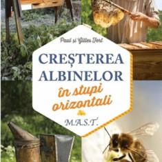 Cresterea albinelor in stupi orizontali | Gilles Fert, Paul Fert