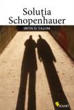 Cumpara ieftin Soluţia Schopenhauer