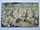 Carte Postala Militara, Germania 1910: Caricatura Politica (cu indoituri)