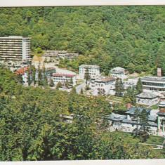bnk cp Slanic Moldova - Vedere - necirculata
