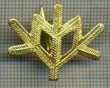 Y 1801 INSIGNA - MILITARA -SEMN DE ARMA -VANATORI DE MUNTE  -PENTRU COLECTIONARI